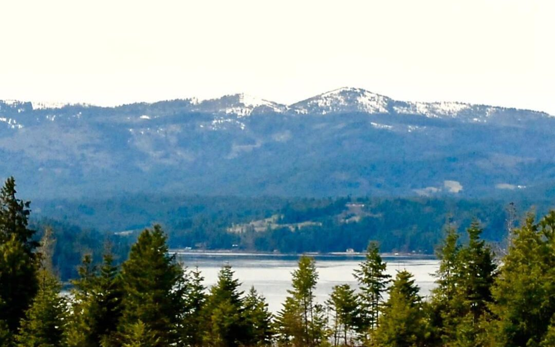 Spectacular Viewfrom Gotham Bay forest and river in the Lake Coeur d'Alene Idaho